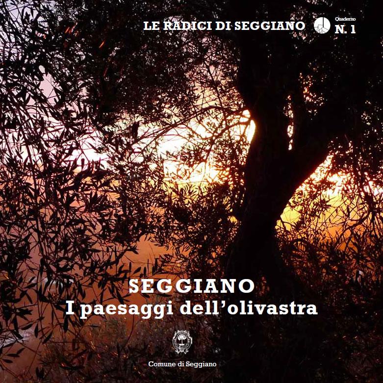 """Libro """"SEGGIANO - I paesaggi dell'olivastra"""""""