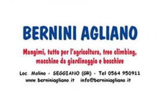 Agliano Bernini